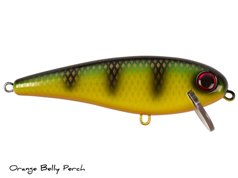 Orange Belly Perch