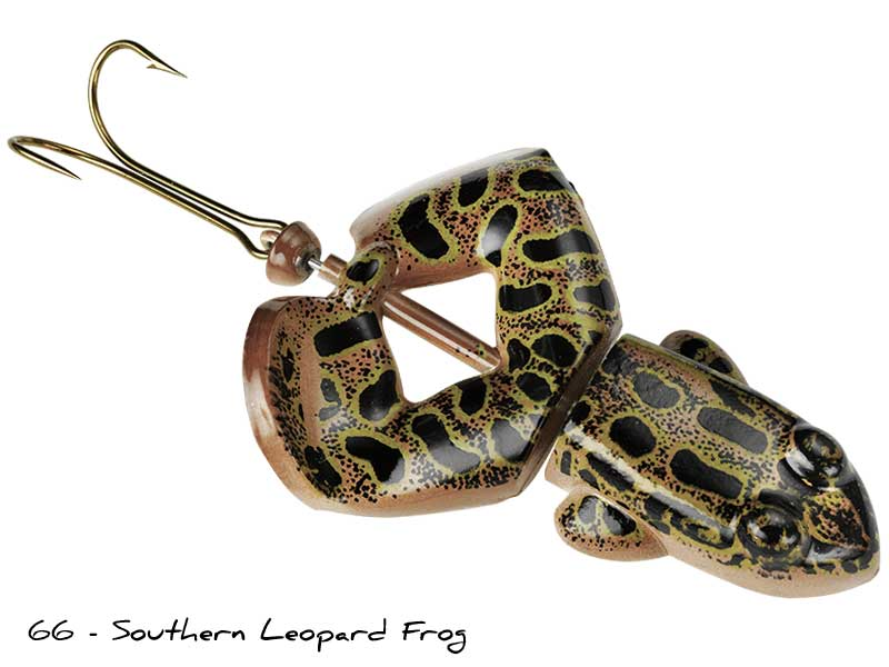 66 - Southern Leopard Frog