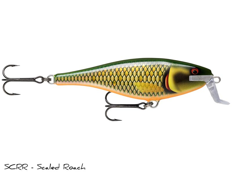 SCRR - Scaled Roach