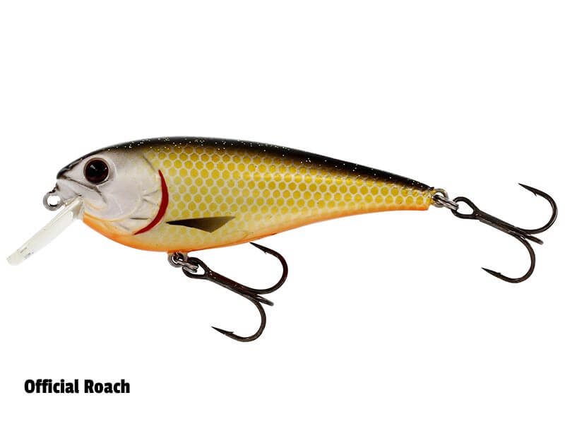 Westin RawBite - 7cm - 12g - Float - Official Roach